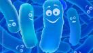 Bào tử lợi khuẩn – Đột phá mới trong ngành men vi sinh