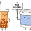 Men vi sinh và thuốc kháng sinh – là bạn hay thù?