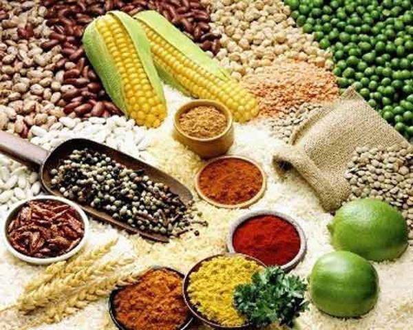 Kết quả hình ảnh cho thực phẩm giàu chất kẽm