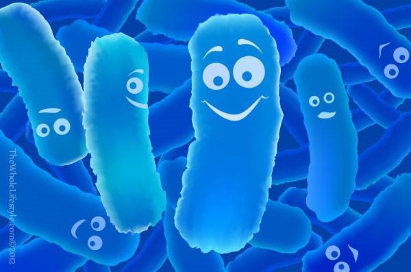 Bio-acimin-probiotics